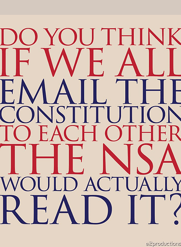 Screenshot_2020-12-16 'Email the Constitution' Essential T-Shirt by e2productions